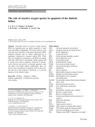 The role of reactive oxygen species in apoptosis of the ... - Springer