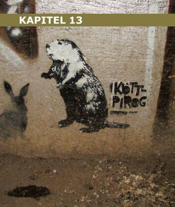 KAPITEL 13 - Sustainable Citizenship