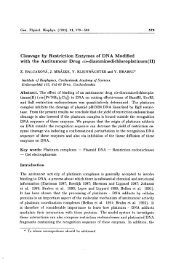 Cleavage by Restriction Enzymes of DNA Modified with ... - Gpb.sav.sk