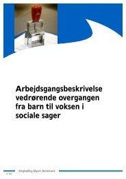 Overgangen fra barn til voksen i sociale sager..pdf - Ringkøbing ...