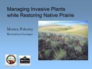 Managing Invasive Plants while Restoring Native Prairie – Monica ...