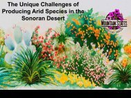 Unique Challenges at Producing Arid Species from the Sonoran ...
