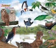 Summer - Cornell Lab of Ornithology
