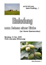 es tut sich was beim Findling... ! (lat. Name: Quercus robur ... - Knonau