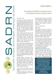 SADRN Policy Brief 2 - Biofuels and food security.pdf - tips