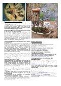 Anoplophora glabripennis und A. chinensis - Favv - Seite 2