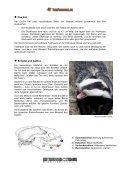 Dachs - Tierforscher.ch - Seite 4