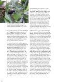 Klimawandel und weltweiter Warenaustausch - zunehmende ... - Seite 3
