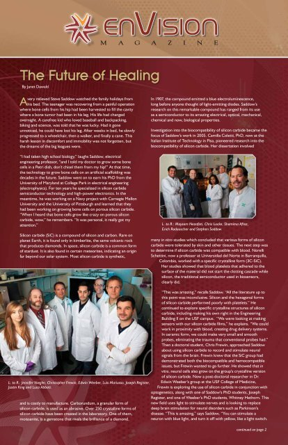 envision - College Of Engineering - University of South Florida
