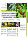 Einheimische Pflanzen - Seite 6