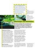 Einheimische Pflanzen - Seite 7