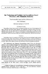 Zur Verbreitung und Variation von Desmodilliscus braueri ...
