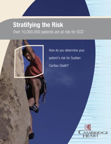 Stratifying the Risk - Movi Group