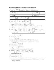 Matrices y sistema de ecuaciones lineales