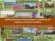 Uplifting Extensive Grazing Systems - Global Agenda of Action for ...