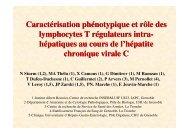 Caractérisation phénotypique et rôle des lymphocytes T ... - Afef