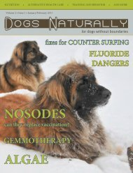 January/February 2011 - Dogs Naturally Magazine
