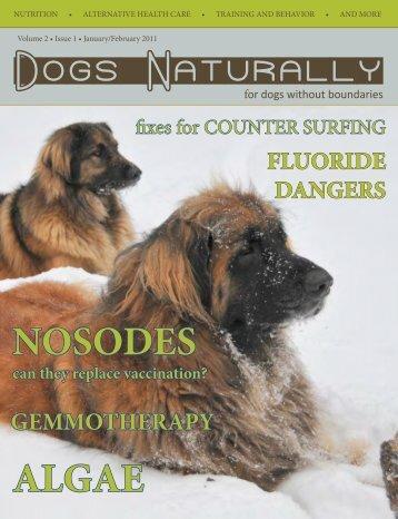 January/February 2011 - Dogs Naturally Magazine