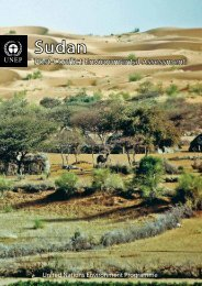 Sudan Post-Conflict Environmental Assessment - Disasters and ...