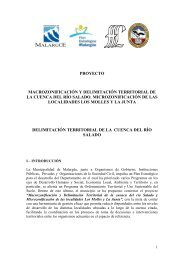 1-Delimitacion-Cuenca-Río Salado.pdf - Plan Estratégico de Malargüe