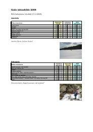 Web balsojuma rezultāti - Campo