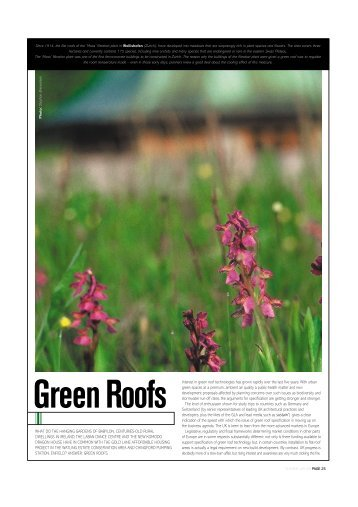 Green Roofs  Sustain Magazine   Lane Roofing