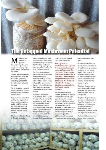 The Untapped Mushroom Potential - Hortfresh Journal
