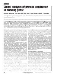 Global analysis of protein localization in budding yeast - Marcotte Lab