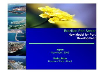Brazilian Port Sector
