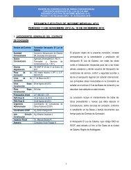 resumen ejecutivo de informe mensual nº13 período 11 de ...