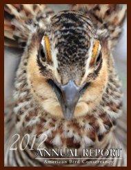 AnnuAl RepoRt - American Bird Conservancy