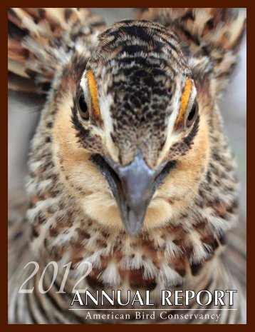 AnnuAl RepoRt - American Bird Conservancy