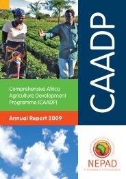 Annual Report 2009 Comprehensive Africa Agriculture ... - CAADP