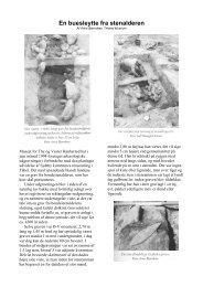 'En buesleytte fra stenalderen'.pdf - Lokalhistorisk Arkiv for Thisted ...