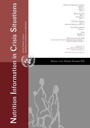 NICS Vol 17, June 2008 - United Nations