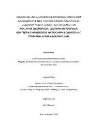 Chemische und Anatomische Untersuchungen zum Laubabbau in