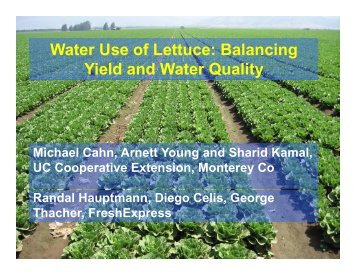 Water Use of Lettuce