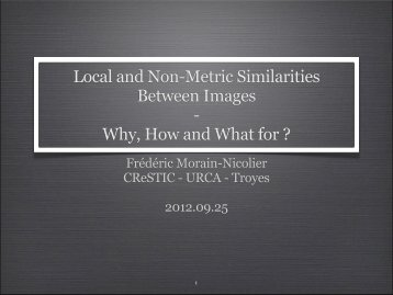 Local and Non-Metric Similarities Between Images ... - Pixel shaker