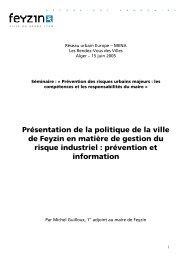 Feyzin et les risques - Euromedina