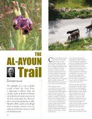 Al-Ayoun trail - Audley Travel