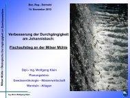 Verbesserung der Durchgängigkeit am Johannisbach ... - Weser NRW