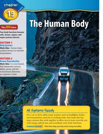 The Human Body - Glencoe