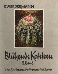 Echinopsis (Lobivia) densispina