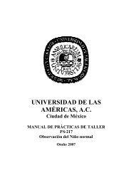 prácticas taller - Universidad de las Américas A. C.