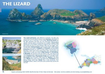 THE LIZARD - Helpful Holidays