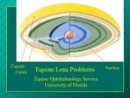 Equine Lens Problems - University of Florida
