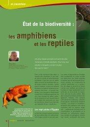 les amphibiens et les reptiles - Natagora