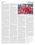 Perspectivas 332 - Page 3