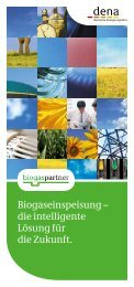 Biogaseinspeisung – die intelligente Lösung für ... - Green Gas Grids
