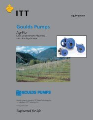 Goulds Pumps - Granite Peak Pump Service